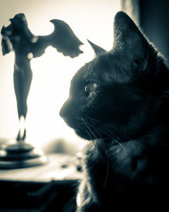 Gothic Kitty and Descending Night